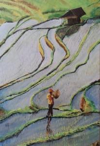 Dans les rizières